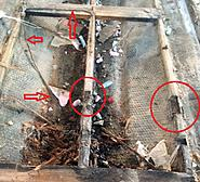 Click image for larger version.  Name:LN2.JPG Views:39 Size:162.6 KB ID:448710